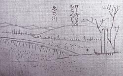 S_echigawa